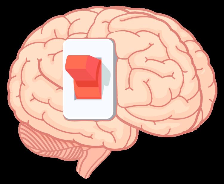 Copywriter Profissional Cérebro